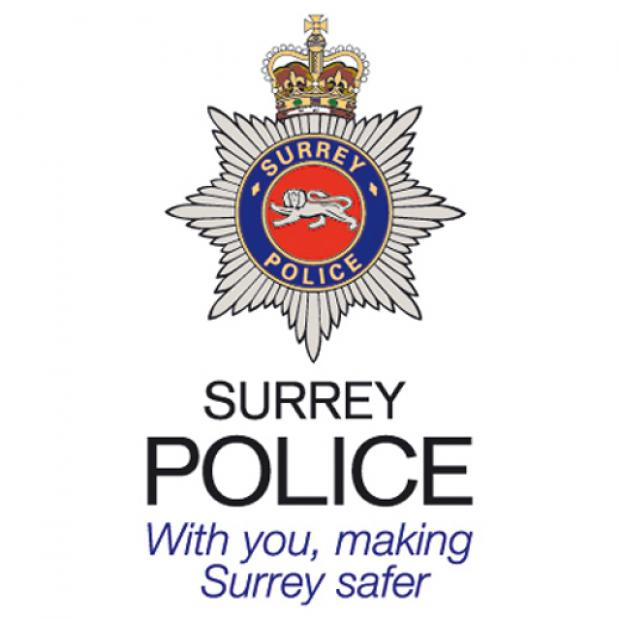 Surrey Police appeal for information on assault at Nonsuch Park
