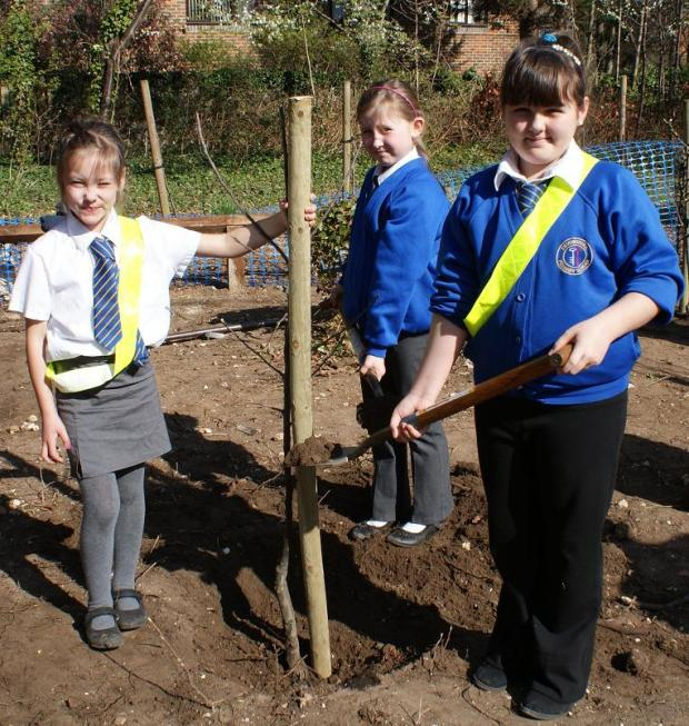 Sutton primary school children get digging