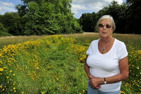 Jill Hansen stands next to the damaged flower meadow