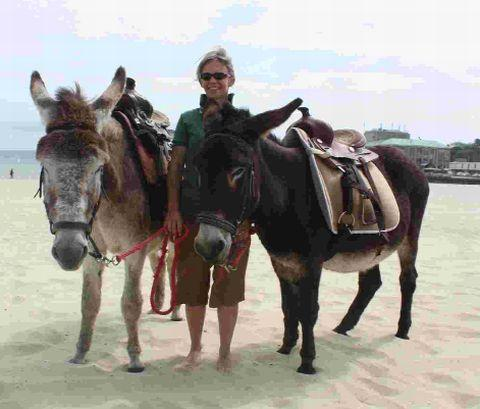 Sutton Guardian: RIDES: Melanie Rush with the beach donkeys