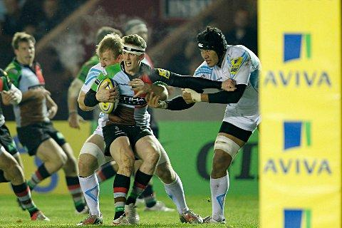 Staying put: Winger Tom Williams in action against Worcester Warriors last year
