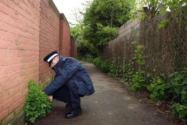 Sutton Guardian: Police search the alley where Willett is alleged to have assaulted a girl