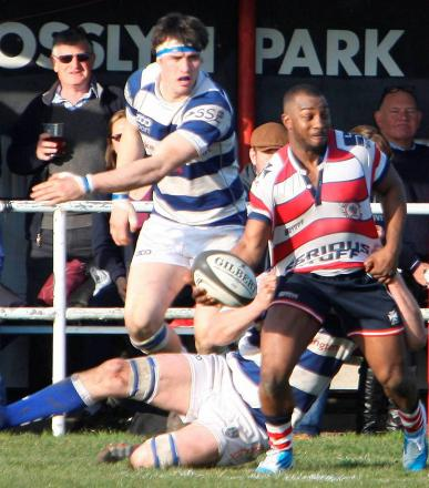 Back for a while: Nev Edwards in action for Rosslyn Park in the 31-11 win over Tynedale on Saturday