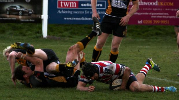 Still trying: Sam Shires goes over for Park at Esher last weekend             Picture: David Whittam