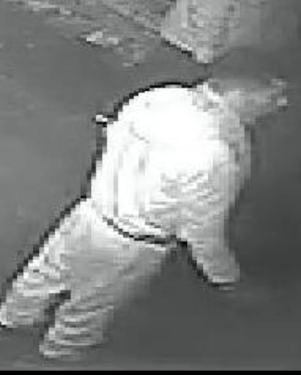 Sutton Guardian: Do you recognise this man?