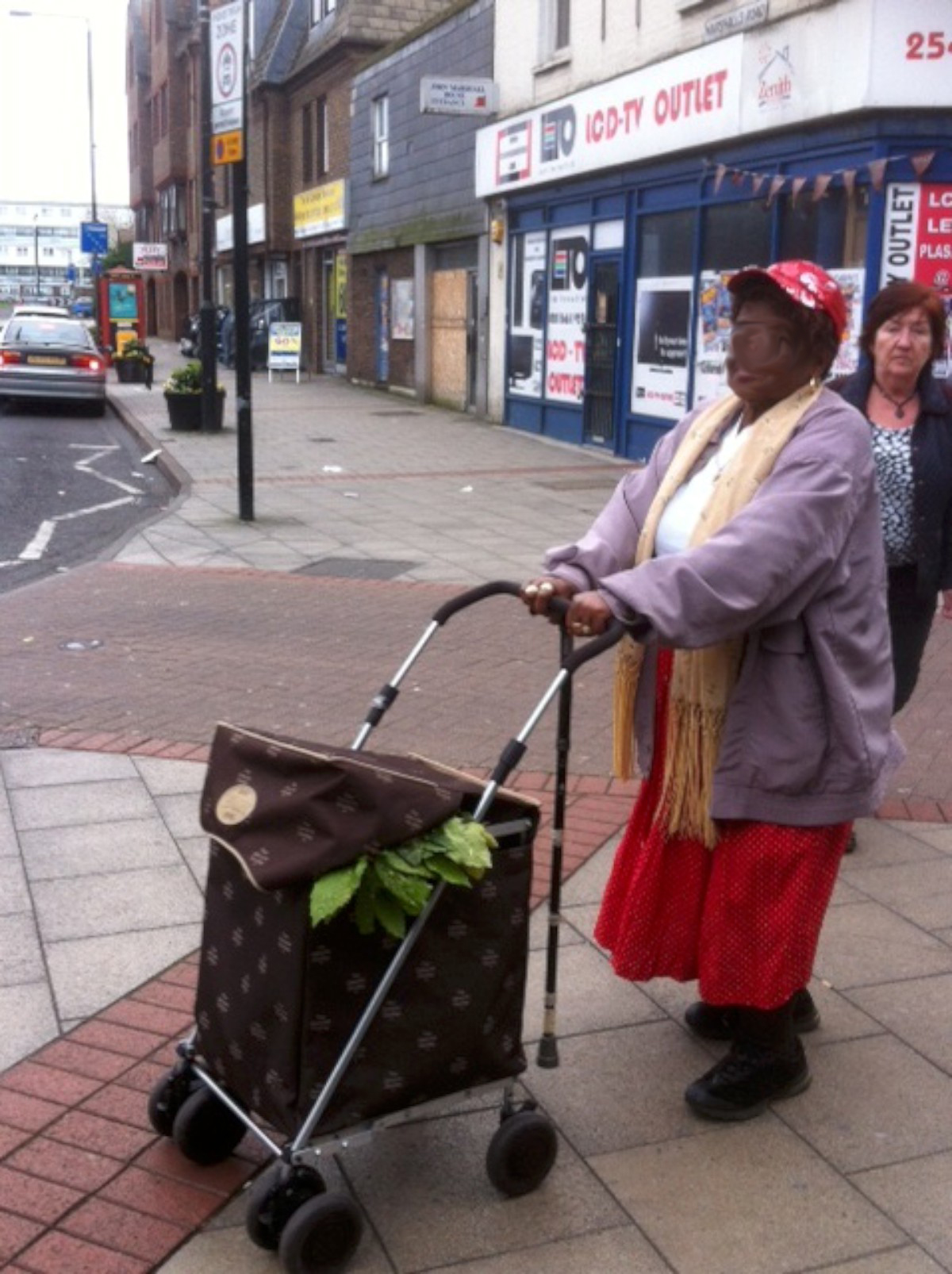 The alleged thief with what appears to be plants protruding from her trolley