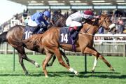 Horse Racing tips and selections for Saturday, August 9