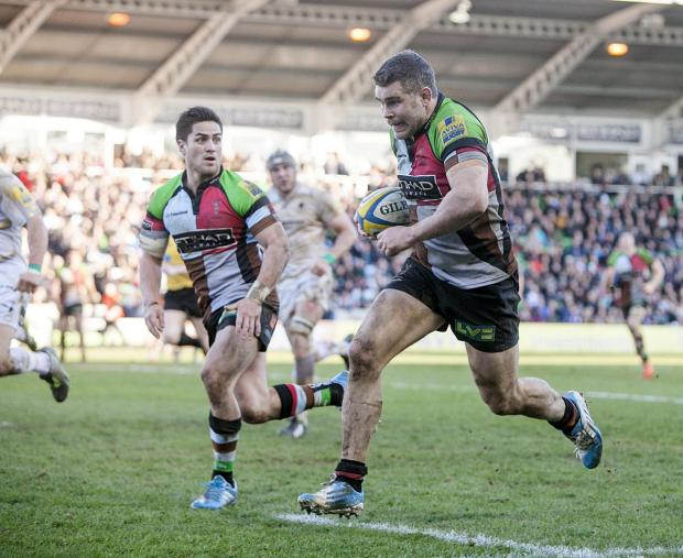 Sutton Guardian: Going strong: Quins veteran Nick Easter still has plenty to offer on the pitch