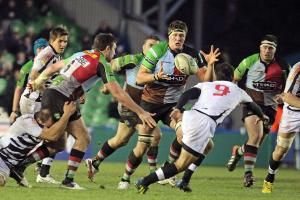 Harlequins: Matthews in the clear