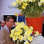 Sutton Guardian: The Prince of Wales has a fondness for daffodils