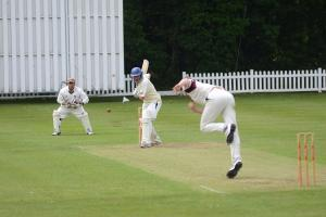 Cricket: Banstead lick their wounds to prepare for a season of consolidation