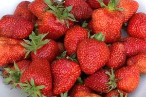 CHEF IN THE GARDEN: Make the most of summer strawberries