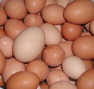 Sutton Guardian: Shopkeepers ban youngsters from buying eggs