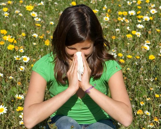 Hayfever sufferers should prepare for summer